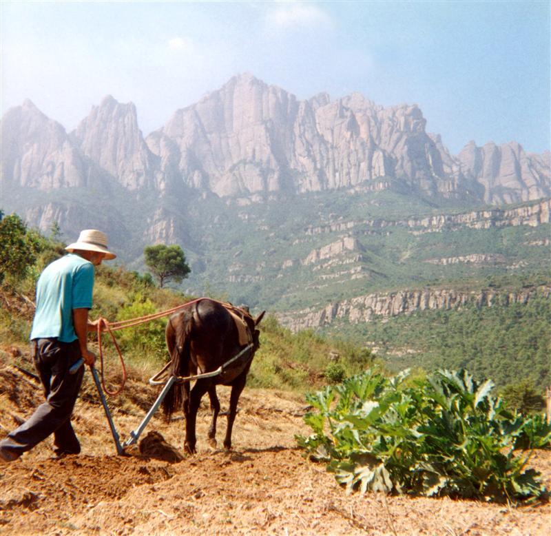 Bauer Spanien